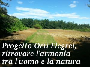 Permalink to:Il Nostro Progetto